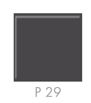 plast  layer -P 29